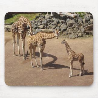 Girafe de bébé et famille de girafe tapis de souris