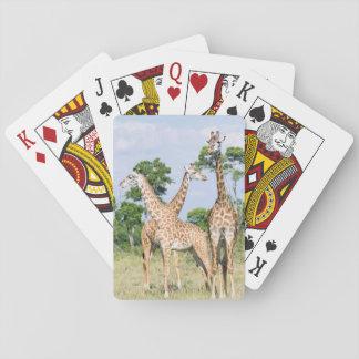 Girafe de Maasai Cartes À Jouer