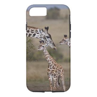 Girafe de Maasai (girafe Tippelskirchi) comme vu Coque iPhone 7