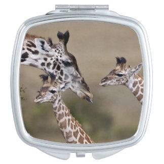 Girafe de Maasai (girafe Tippelskirchi) comme vu Miroir De Maquillage