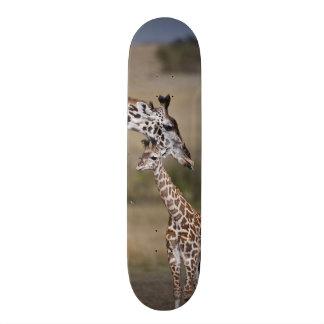 Girafe de Maasai (girafe Tippelskirchi) comme vu Skateoard Personnalisé