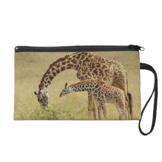 Girafe de masai de mère et de bébé, Giraffa Pochettes Avec Dragonne