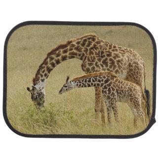 Girafe de masai de mère et de bébé, Giraffa Tapis De Voiture