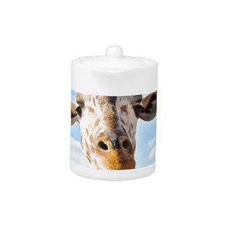 Girafe idiote