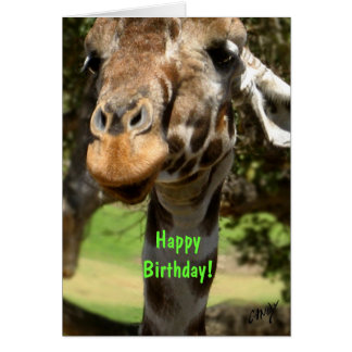 Girafe, joyeux anniversaire ! carte de vœux