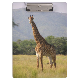 Girafe Porte-bloc