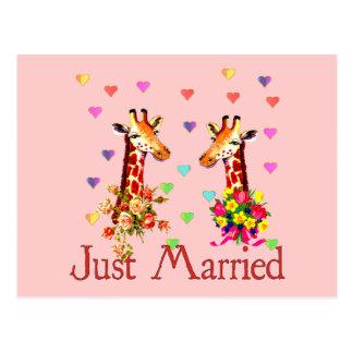 Girafes de mariage cartes postales