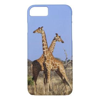 Girafes réticulées, camelopardalis 3 de girafe coque iPhone 7