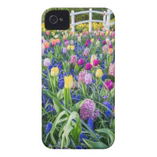 Gisement de fleurs avec les jacinthes et le pont coque iPhone 4 Case-Mate