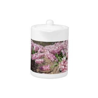 Gisement de fleurs avec les jacinthes roses en