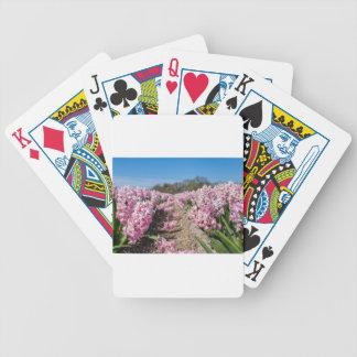 Gisement de fleurs avec les jacinthes roses en jeu de poker