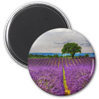 Gisement de lavande pittoresque, France Magnet Rond 8 Cm