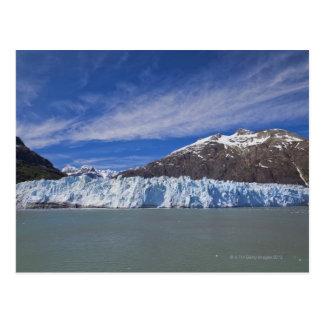 Glacier de Margerie dans la baie de glacier NP Cartes Postales