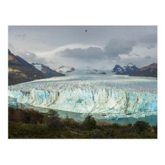 Glacier de Perito Moreno panoramique Carte Postale