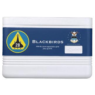 Glacière d'igloo de l'escadron 28 de cadet d'USAFA