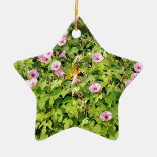 Gloires de matin roses Bush Ornement Étoile En Céramique