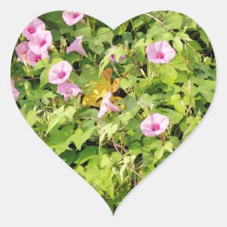 Gloires de matin roses Bush Sticker Cœur