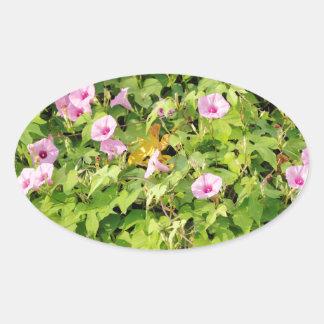 Gloires de matin roses Bush Sticker Ovale