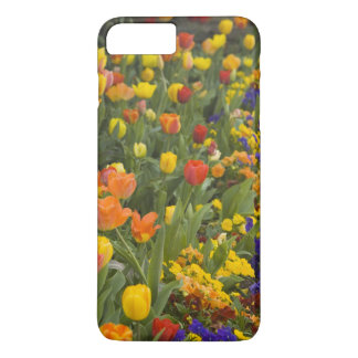 Glycines et tulipes dans le jardin de Dumbarton Coque iPhone 7 Plus