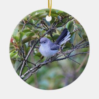 Gnatcatcher de gris bleu ornement rond en céramique