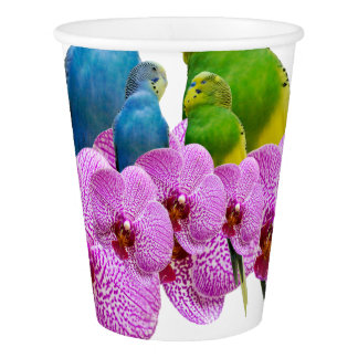 Gobelets En Papier Perruche avec l'orchidée pourpre
