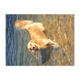 Golden retriever dans l'océan toile