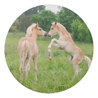 Gomme Amis mignons de poulains de chevaux de Haflinger