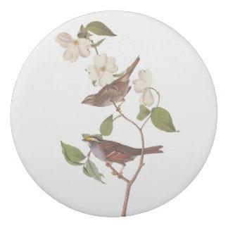Gomme Art vintage d'Audubon de moineau Throated blanc
