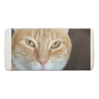 Gomme Chat tigré orange