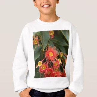 Gomme fleurissante rouge (ficifolia de Corymbia) Sweatshirt
