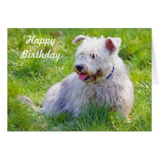 Gorge de carte de joyeux anniversaire de chien