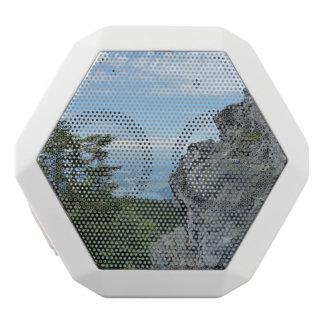 Gorge de Colombie/haut-parleur montagne de mélèze Haut-parleurs Blancs Sans-fils