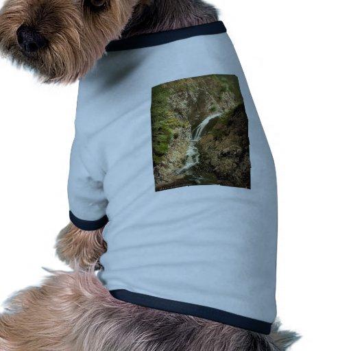 Gorge de Ravenne, forêt noire, Baden, Allemagne P  T-shirt Ringer Pour Chien