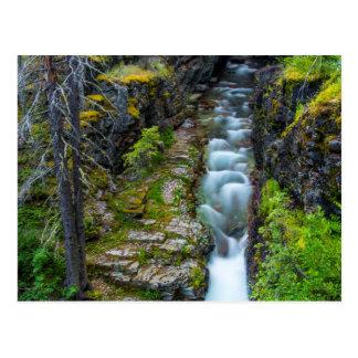 Gorge de Sunrift en parc national de glacier, Cartes Postales