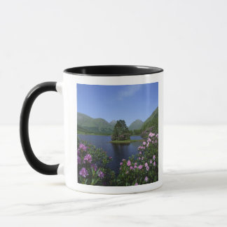 Gorge Etive, montagnes, Ecosse Tasses