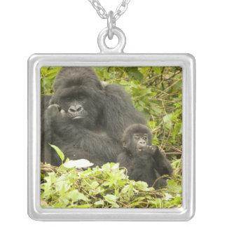 Gorille de montagne, beringei de gorille pendentif carré