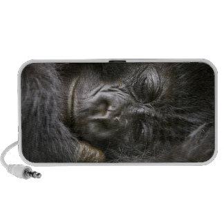 Gorille de montagne juvénile 4 mini haut-parleurs