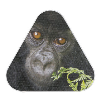 Gorille de montagne juvénile haut-parleur bluetooth