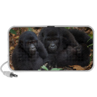 Gorilles de montagne, parc national de volcans haut-parleurs iPhone