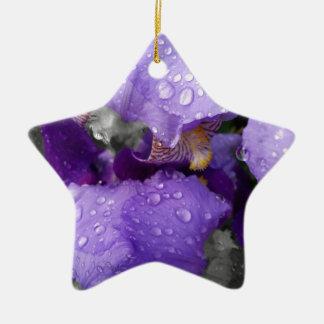 gouttes de pluie sur l'iris ornement étoile en céramique