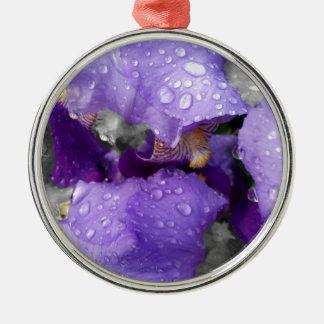 gouttes de pluie sur l'iris ornement rond argenté