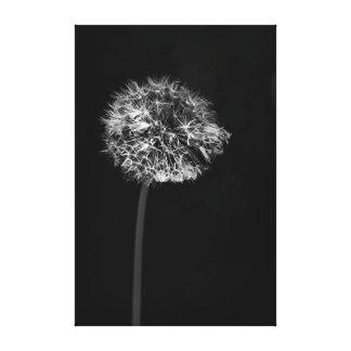 Graine dramatique minimaliste noire et blanche de impressions sur toile