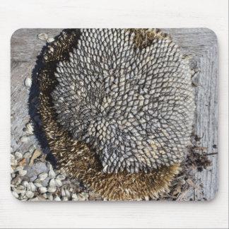 Graines de tournesol sur le bois tapis de souris
