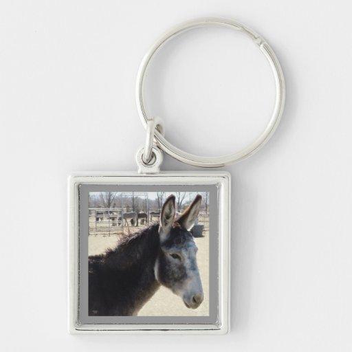 Grand ami velu d'âne d'oreilles occidental porte-clefs