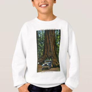 Grand arbre Wawona, verger de Mariposa, CA Sweatshirt