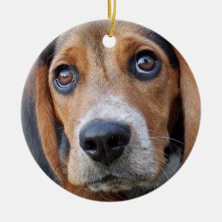 Grand chiot de beagle observé par Brown Ornement Rond En Céramique