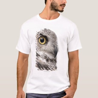 Grand hibou à cornes - Bubo Virginianus T-shirt