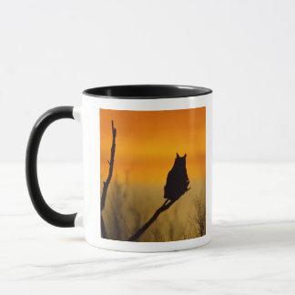 Grand hibou à cornes été perché au coucher du mugs