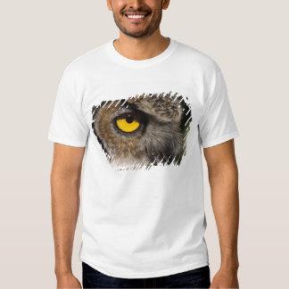 grand hibou à cornes, varia de Stix, zoo de T-shirt