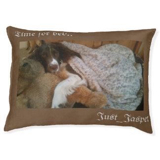 Grand lit de chien